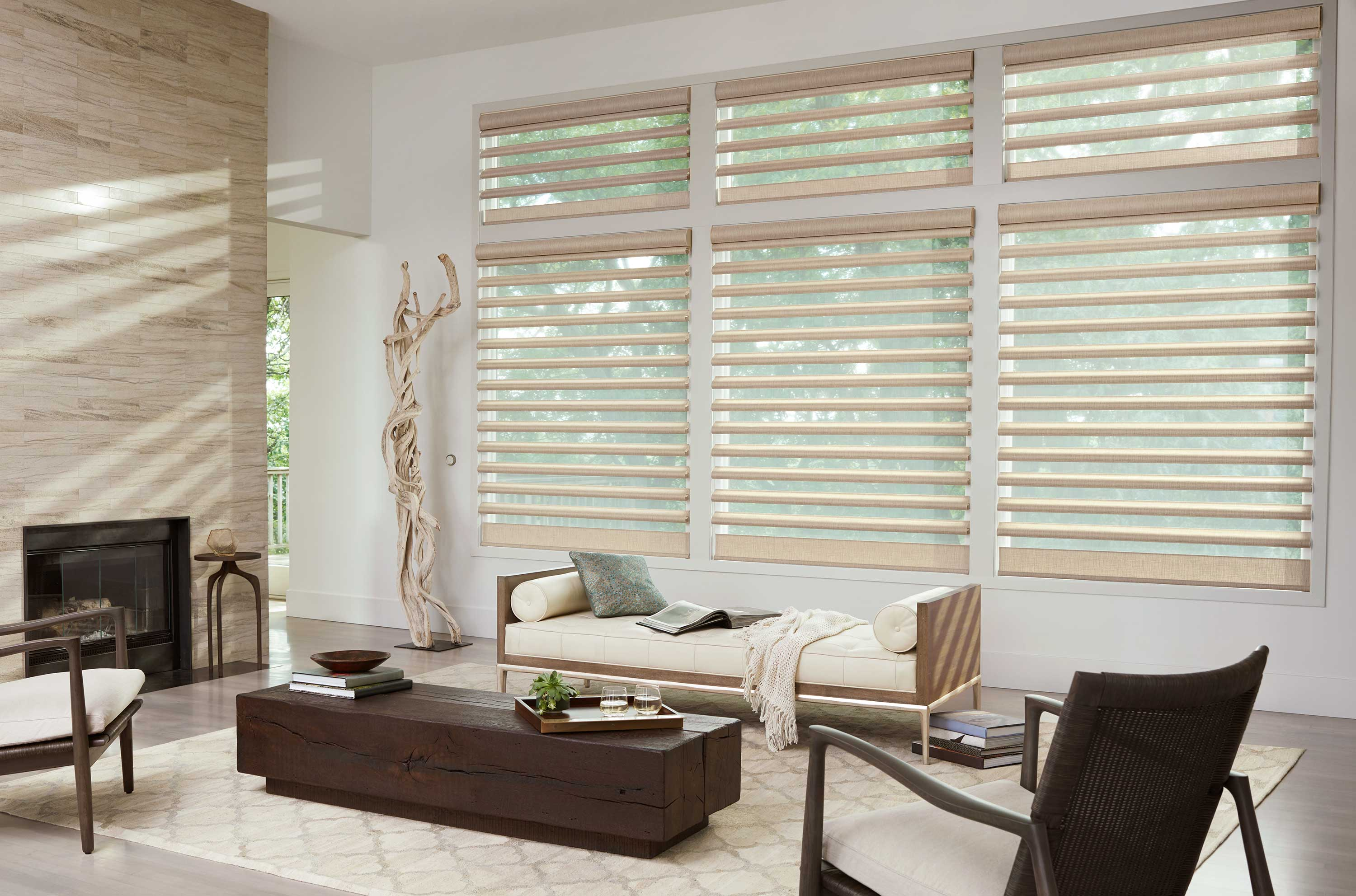 Hunter Douglas Pirouette Shades for Living Rooms Near Near Fairfield and Fremont, California (CA)