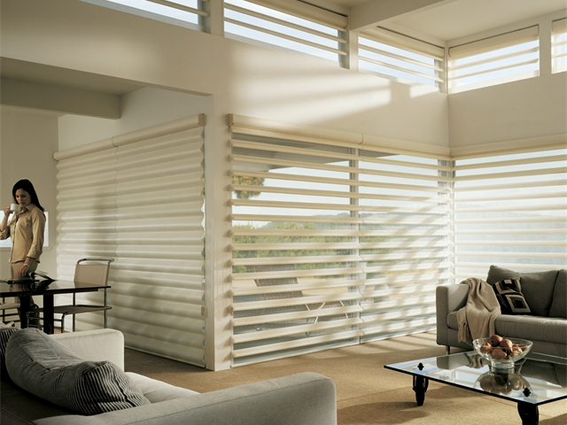 https://www.wfnc.com/wp-content/uploads/2019/06/HD-Products-gallery_pirouette_window_shadings_3.jpg