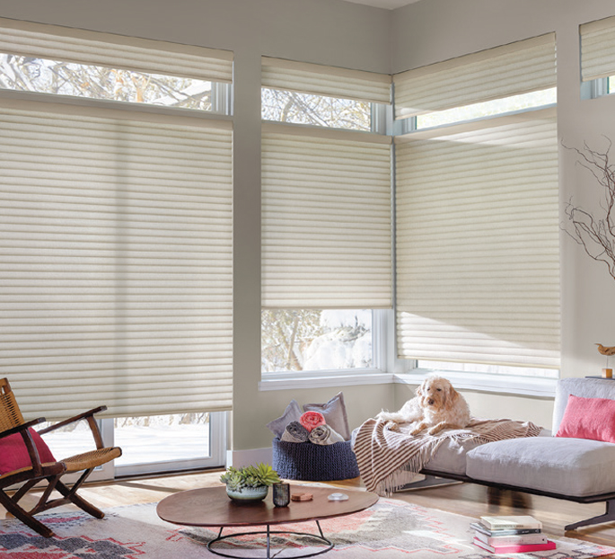 Hunter Douglas Sonnette Roller Shades Savings Near Austin, Texas (TX)