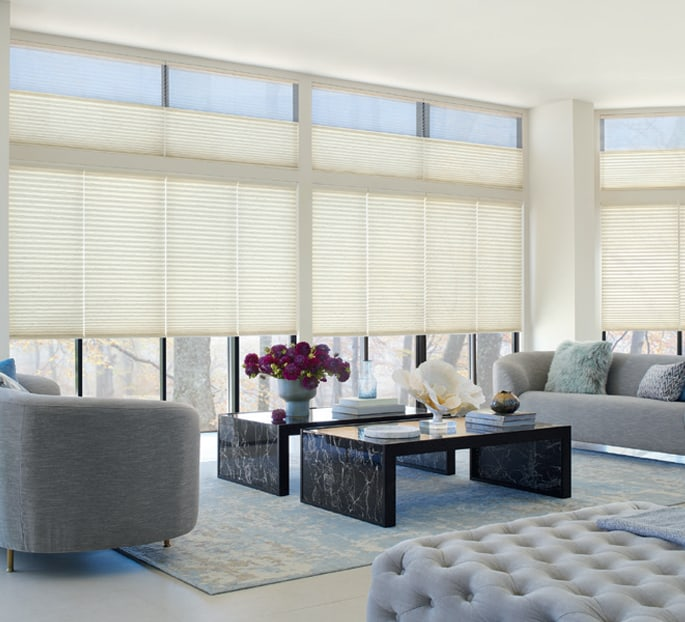 Hunter Douglas Duette Honeycomb Shades Savings Near Austin, Texas (TX)